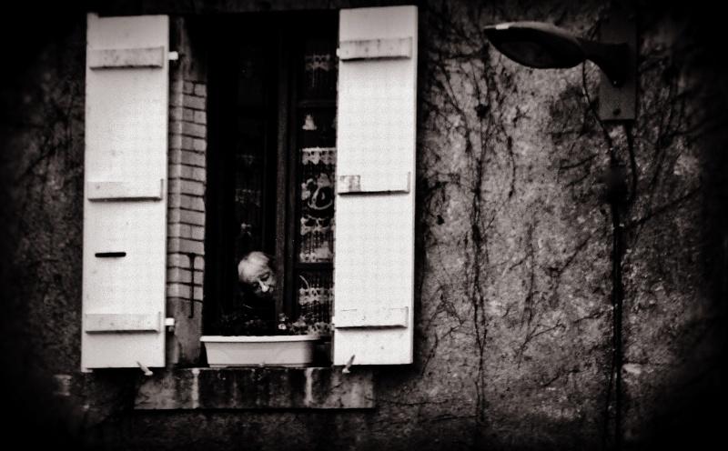 par la fenêtre Img_2612