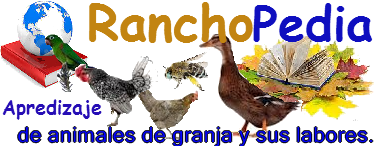 RanchoPedia