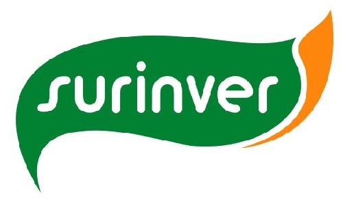 Patrocinadores del RunRun Clásicas 2013. Surniv11