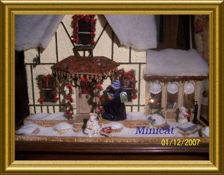 La maison des chats Minett10
