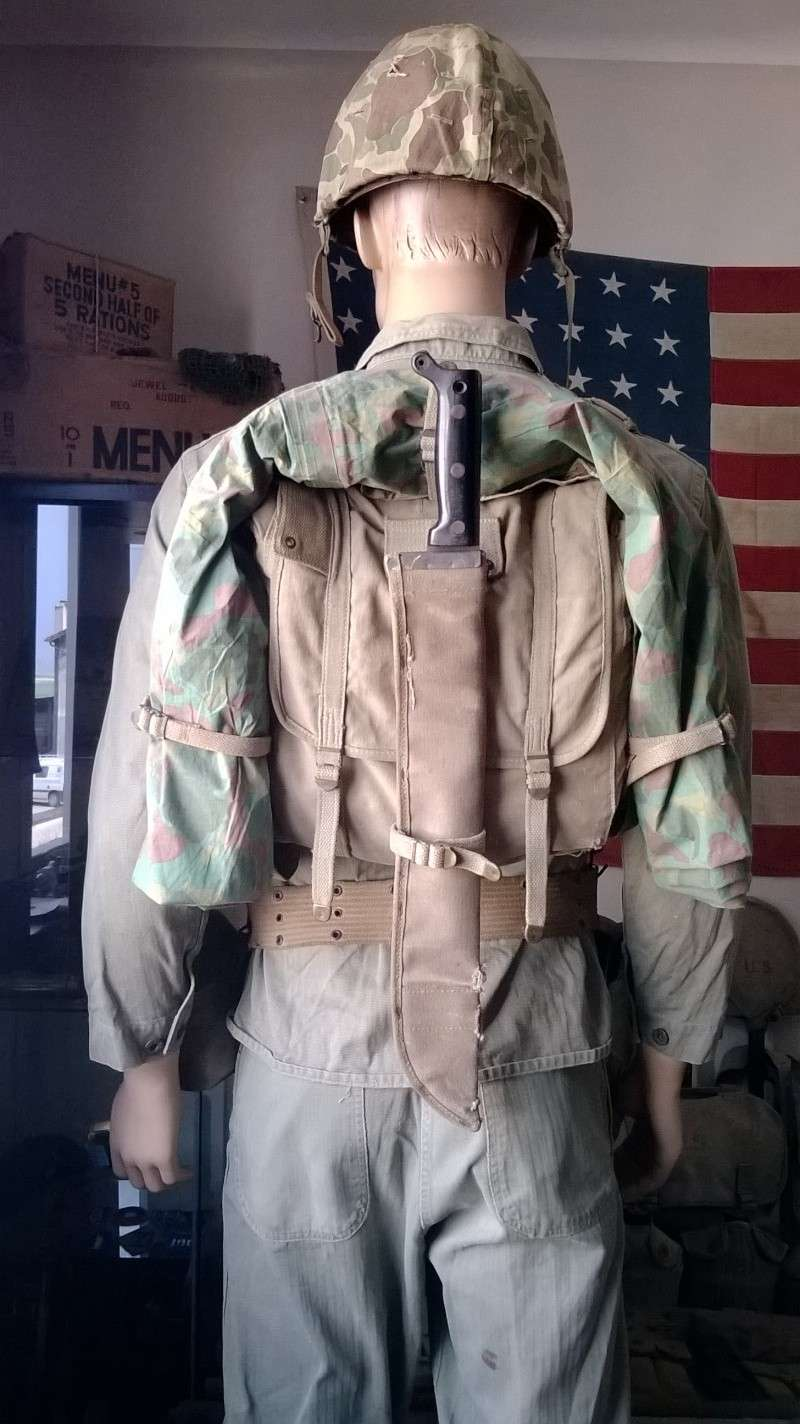 Peleliu 1st Marine Division  Wp_20144