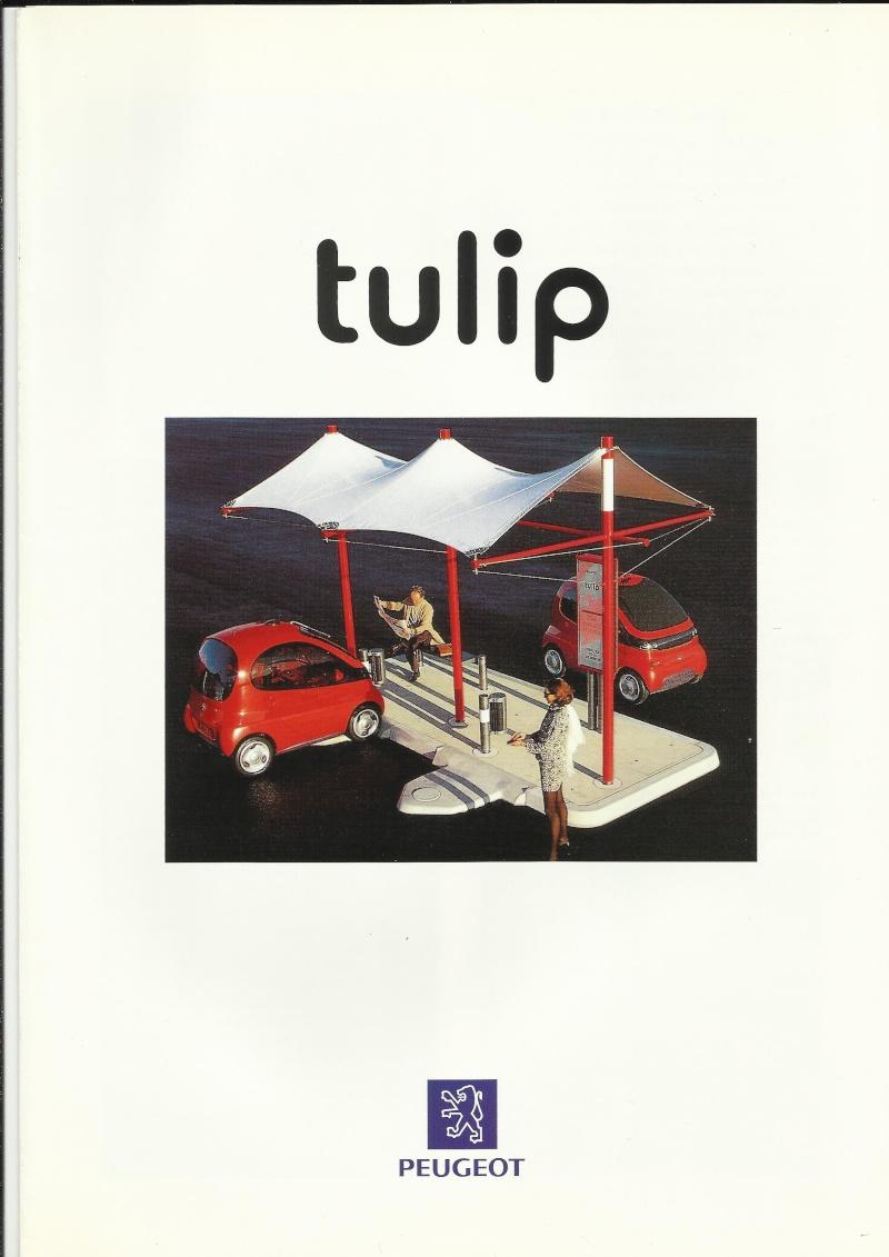brochure 405 en general (scans perso) Tulip_10
