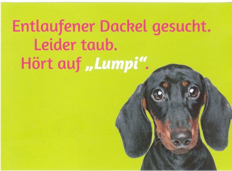 Deutscher Humour - Page 2 Dackel10