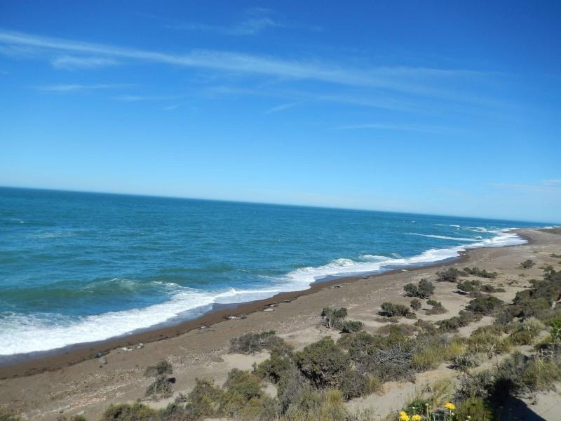 Mi viaje por Argentina - noviembre 2013 Dscn0314