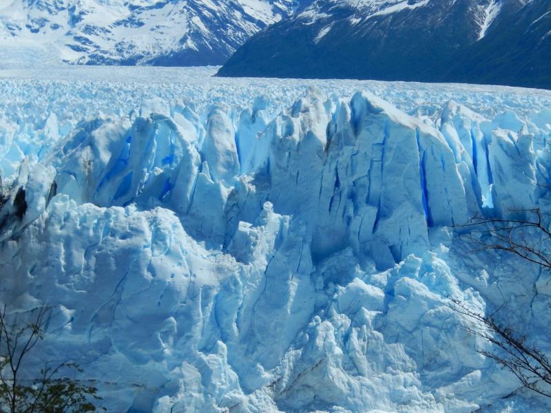 Mi viaje por Argentina - noviembre 2013 Dscn0417