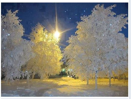 Our Amazing World - Christmas around the World Amazin12