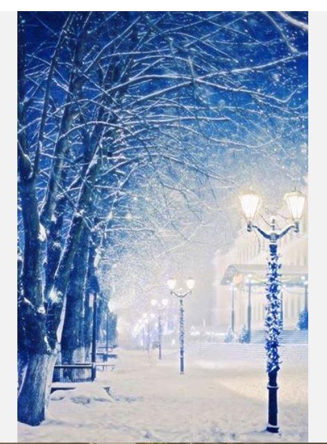 Our Amazing World - Christmas around the World Amazin16
