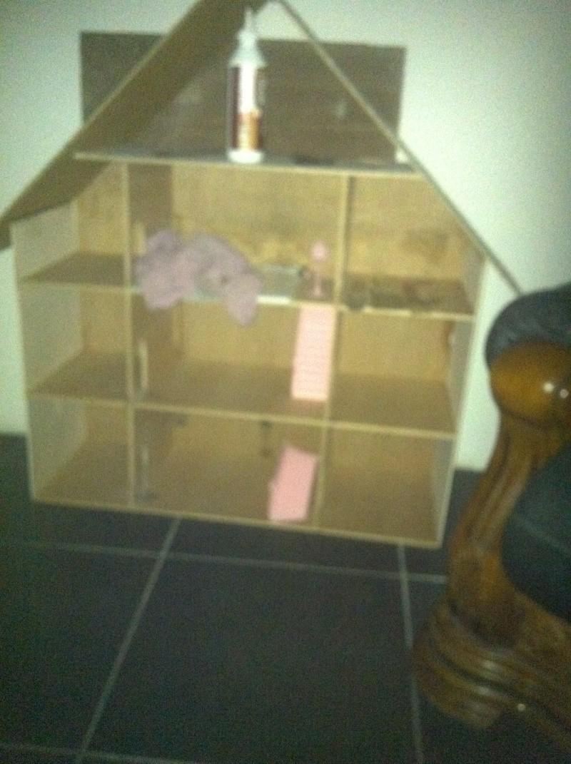 la maison de ma schtroumpfette Maison12