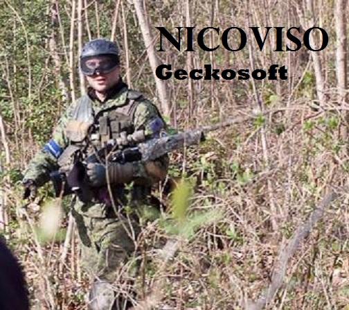 Membres Geckosoft Nicovi11