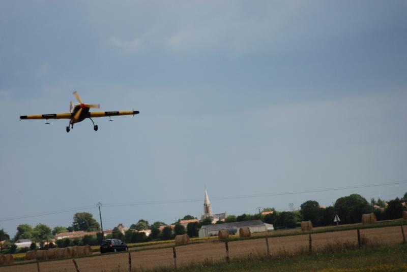 Avions de voltige à Fontenay le Comte Dsc_0278