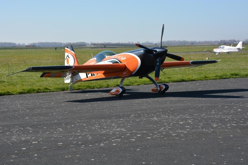 Avions de voltige à Fontenay le Comte Dsc_0934