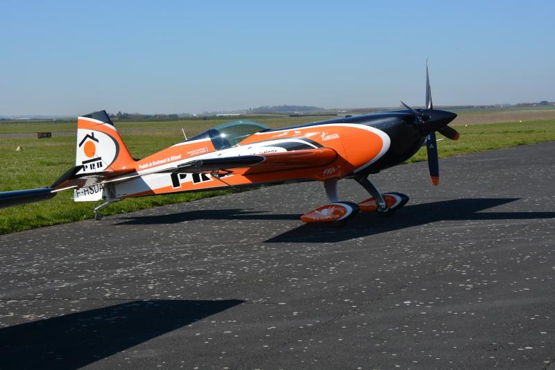 Avions de voltige à Fontenay le Comte Dsc_0938