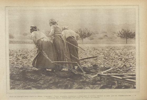 14-18 : Trois robustes paysannes Lpt-3r10