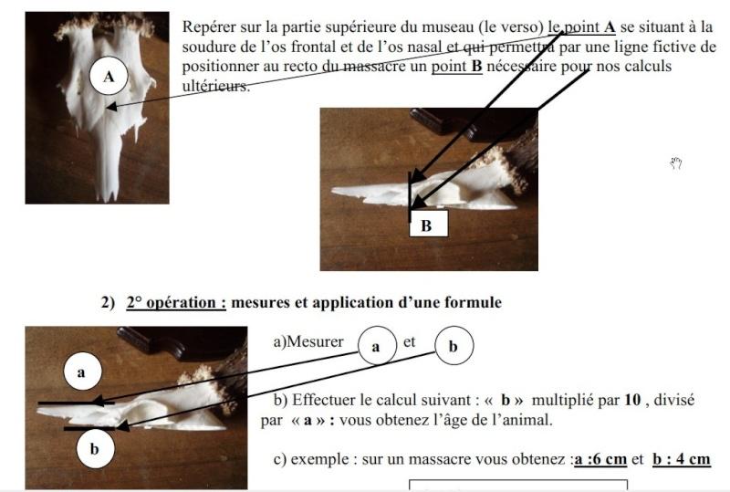 âge chevreuil !! - Page 4 Corel10
