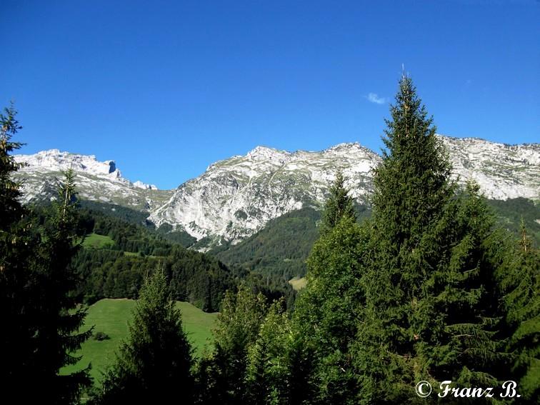""""""" La haut sur la montagne """" ou, Franz et ses escapades alpines ... - Page 2 Dscf2110"""
