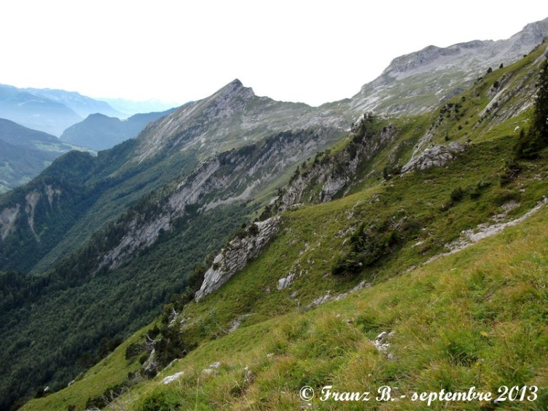 """"""" La haut sur la montagne """" ou, Franz et ses escapades alpines ... - Page 2 Dscf2114"""