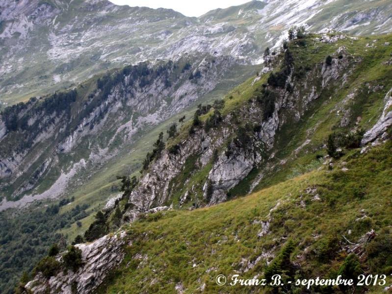 """"""" La haut sur la montagne """" ou, Franz et ses escapades alpines ... - Page 2 Dscf2115"""
