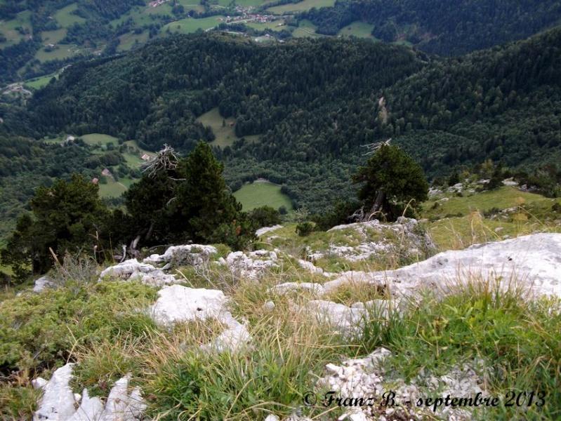 """"""" La haut sur la montagne """" ou, Franz et ses escapades alpines ... - Page 2 Dscf2117"""