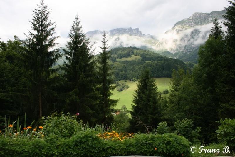 """"""" La haut sur la montagne """" ou, Franz et ses escapades alpines ... - Page 2 Img_0510"""