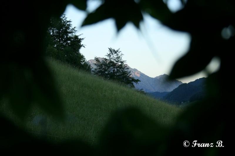 """"""" La haut sur la montagne """" ou, Franz et ses escapades alpines ... - Page 2 Img_4614"""
