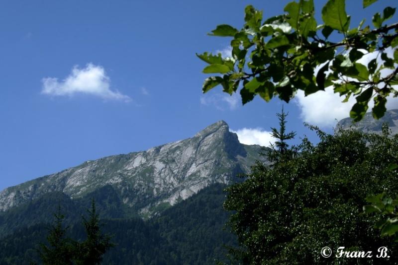 """"""" La haut sur la montagne """" ou, Franz et ses escapades alpines ... - Page 2 Img_5311"""