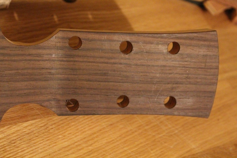 """OM #1, Benjamin Paldacci Guitars: """"First Taste"""": Vidéo en ligne! - Page 3 Img_7915"""