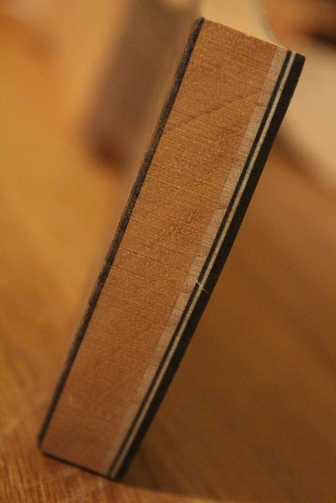 """OM #1, Benjamin Paldacci Guitars: """"First Taste"""": Vidéo en ligne! - Page 3 Img_7917"""