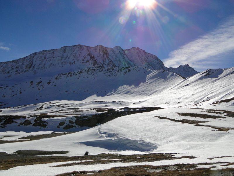 La Ville des Glaciers - Col de la Seigne Dsc02746