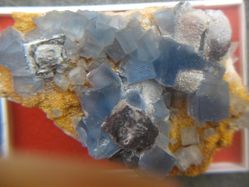 Fluorine  de Bingham Nouveau Mexique 00912