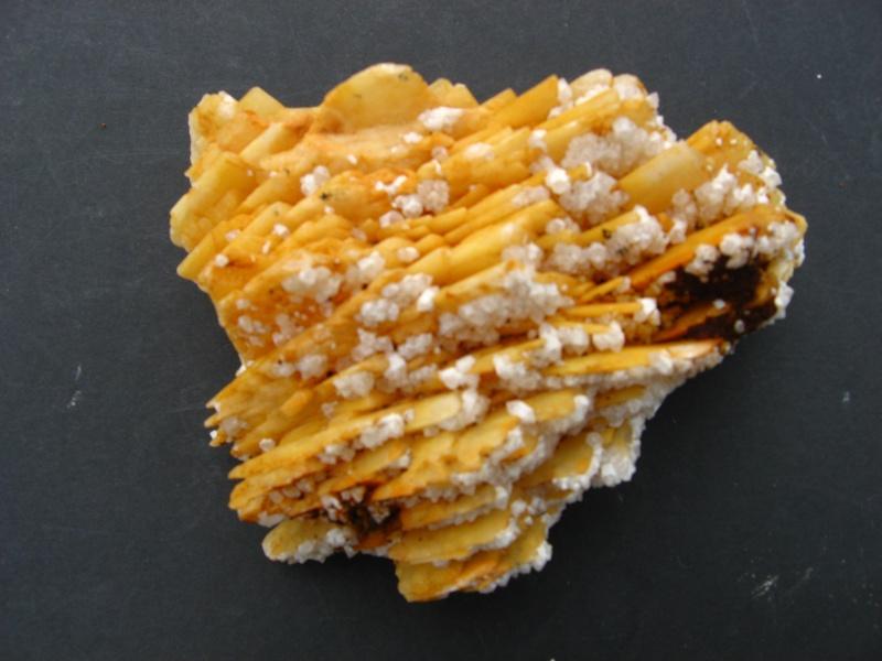 Différentes BARITES  de la mine CLARA 02414