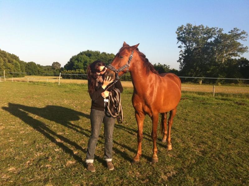 QUICKLY, poney New Forest PP, sauvé par Clémence64 !!!! (Mai 2013) - Page 4 10356510