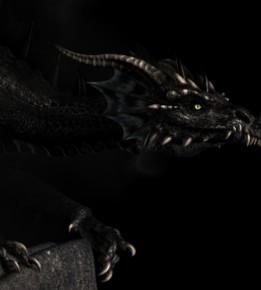 Réserve naturelle - Liste des montures Dragon12
