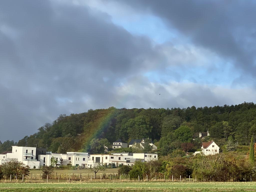 rainbow Img_5210