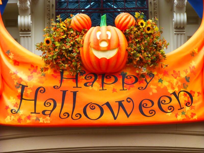 Trip Report du 20 et 21 juin 2013, du 4 et 5 septembre, du 11 octobre, de la soirée Halloween du 31, séjour du 21 et 22 novembre au Santa Fé et visite surprise du 31 décembre :) - Page 6 P1060213