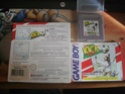 FAUSSE BOITE GAME BOY?? Pict0210