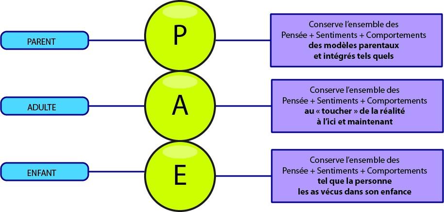 MBTI et relativisme des fonctions Pae10