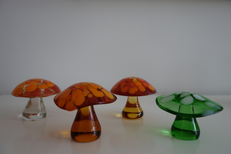 Found another mushroom! Dsc00112
