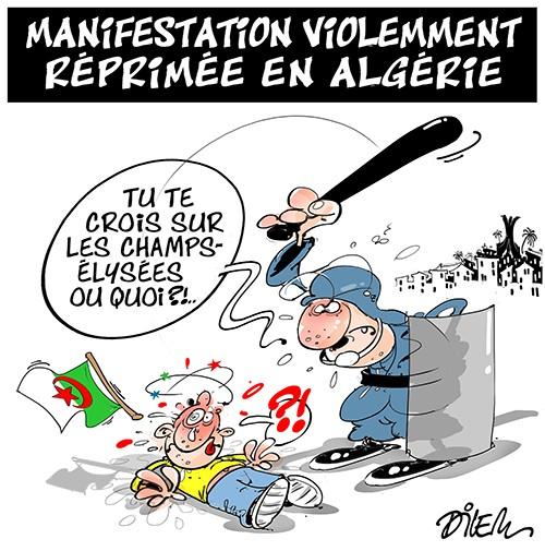 Violences à Paris, Lyon, Marseille… L'impuissance publique Image014