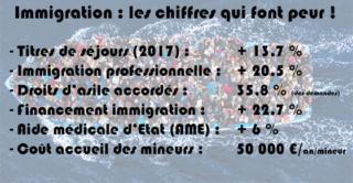 En vérité, les Européens n'en peuvent plus de l'immigration ! - Page 3 Immigr10