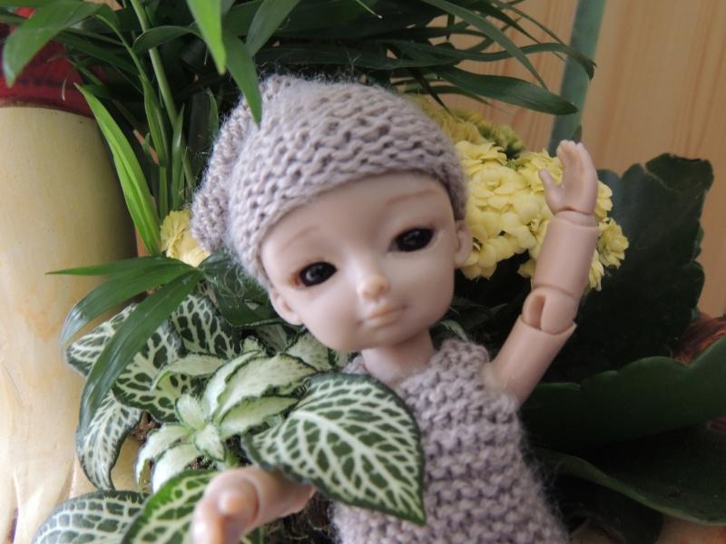 bébés hujoo et petites fairy : nouvelles photos - Page 2 Dscn1811