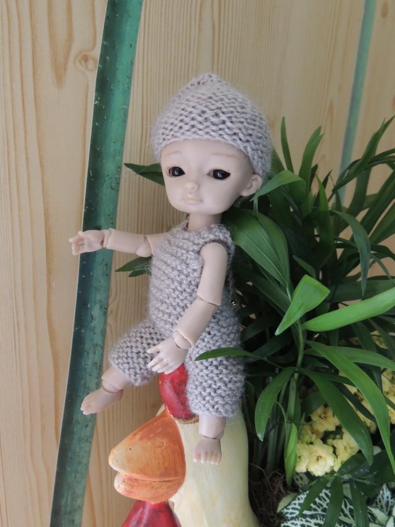 bébés hujoo et petites fairy : nouvelles photos - Page 2 Dscn1812