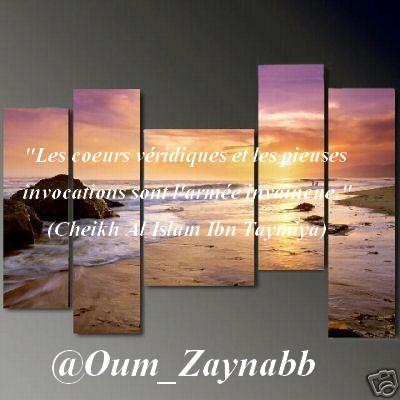 Montage d'Oum Zaynab n°8 43127610