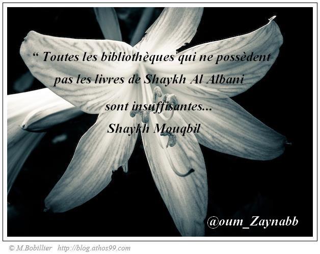 Montage d'Oum Zaynab n°5 55145210