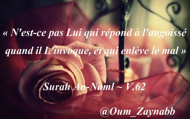 Montage d'Oum Zaynab n°3 73404210
