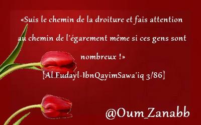 Montage d'Oum Zaynab n°20 Lmmll10