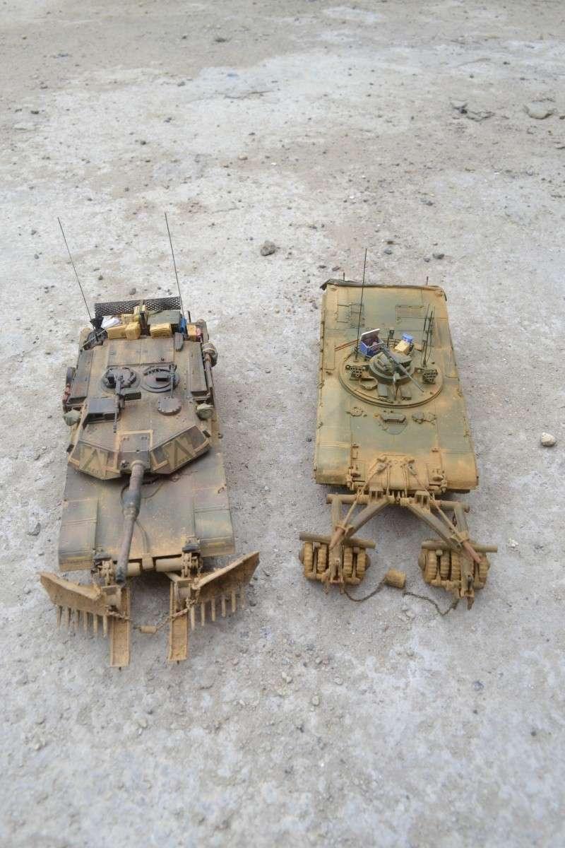 M1 mine rollers et M1 mine plows (dragon et trumpeter 1/35) Dsc_0059