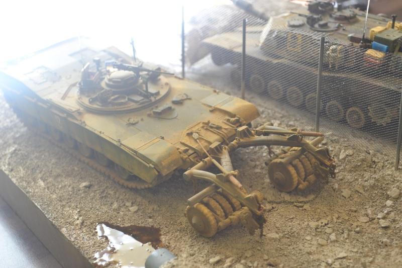 M1 mine rollers et M1 mine plows (dragon et trumpeter 1/35) Dsc_0071