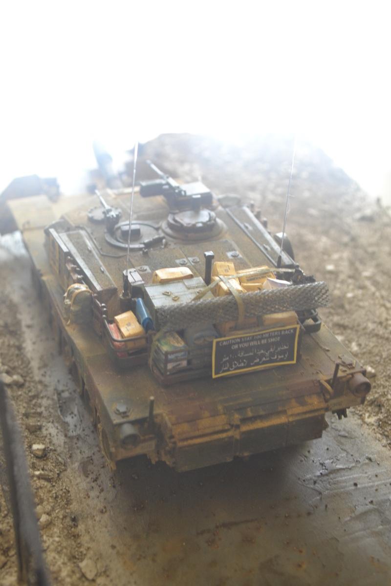 M1 mine rollers et M1 mine plows (dragon et trumpeter 1/35) Dsc_0072
