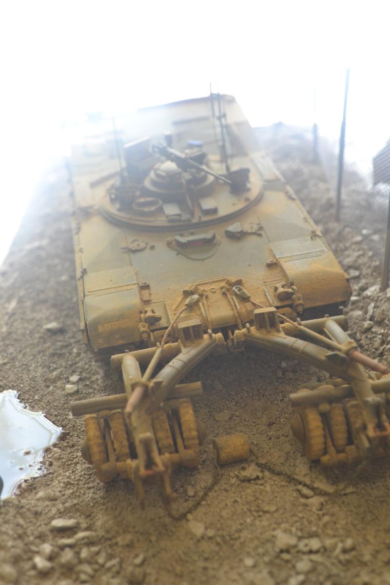M1 mine rollers et M1 mine plows (dragon et trumpeter 1/35) Dsc_0073