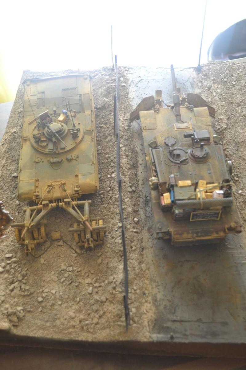 M1 mine rollers et M1 mine plows (dragon et trumpeter 1/35) Dsc_0074